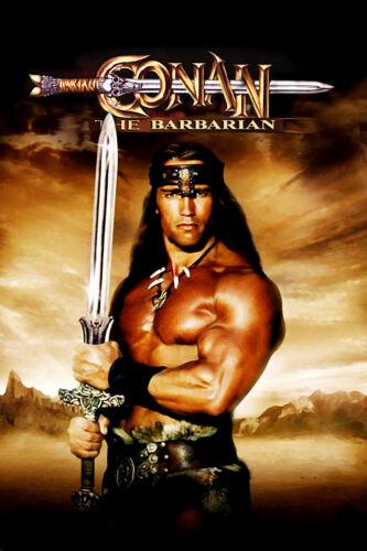 """CONAN THE BARBARIAN Silk Fabric Poster 11/""""x17/"""" RARE Arnold Schwarzenegger"""