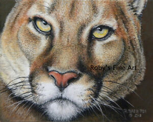 Cougar-Art-5-034-x7-034-Print-034-Cougar-Face-034-Giclee-by-Wildlife-Artist-Roby-Baer-PSA