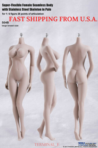 PHICEN 1//6 Seamless Body Pale L Bust Buttock Curved Steel Skeleton S04B ❶USA❶