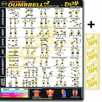 advanced dumbbell exercise workout banner poster big 28 x