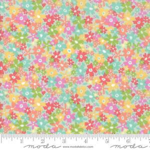 MODA Fabric ~ SUNNYSIDE UP ~ by Corey Yoder by 1//2 yard 29052 20 Gossamer