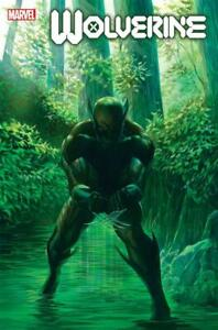 Wolverine-Poster-by-Alex-Ross-New-Rolled