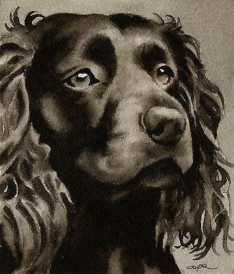Boykin Spaniel Art Print Sepia Watercolor Painting by Artist DJR