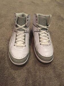 Nike Air Jordan II 2 Retro SILVER ANNIVERSARY 3M 385475-101 Size 10