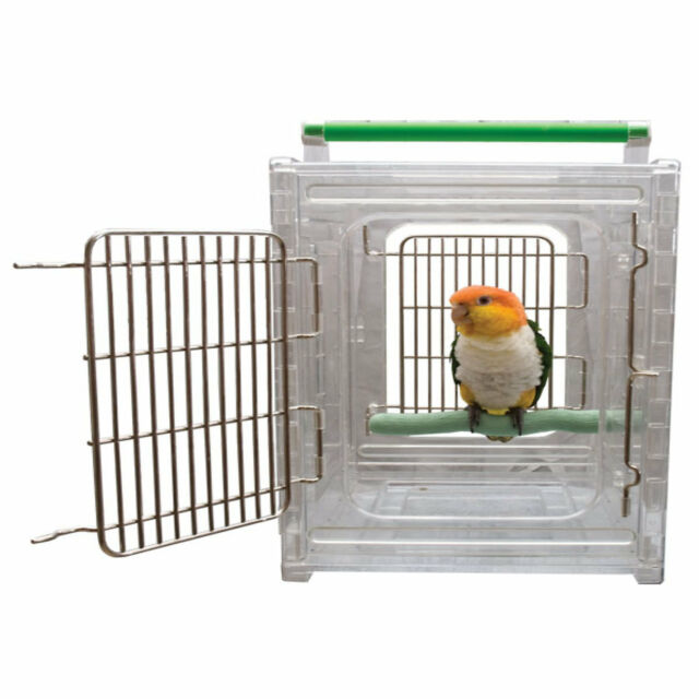 Beautiful Caitec Toys Foraging Wheel Discounts Sale Bird Supplies