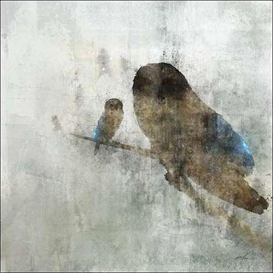 Ken Roko  Mama Owl and Baby Keilrahmen-Bild Leinwand Eule Vögel modern