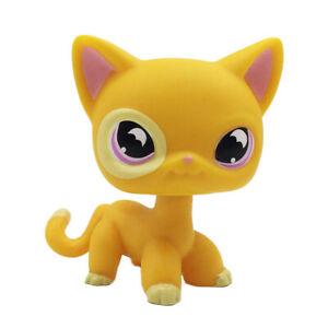 Pet Shop Lps Toys 855 Orange Yellow Short Hair Cat Purple Moon Eyes Ebay