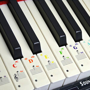 Removable-Piano-Keyboard-Stickers-for-88-61-49-54-37-Keys-Note-Transparent-Decal