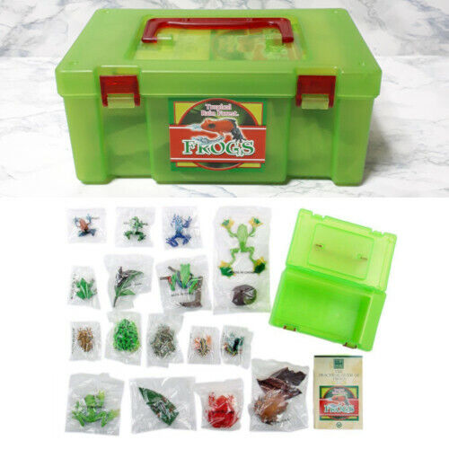 Frog Colorata Real Figure Box