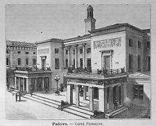 1891:PADOVA.PADUA = VEDUTA CAFFE PEDROCCHI = VENETO.ITALIA.Xilo.ETNA.P.Premoli