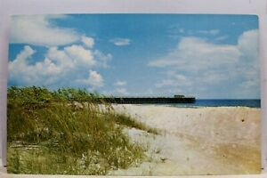 South-Carolina-SC-Myrtle-Beach-State-Park-Postcard-Old-Vintage-Card-View-Post-PC