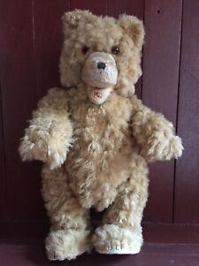 Antique-Teddy-Baby-Teddy-Bear-Probably-1930-Steiff