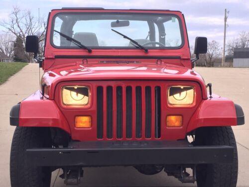 Comanche CherokeeXJ Angry Snake Eyes Rattler Viper 1995 1996 Jeep WranglerYJ