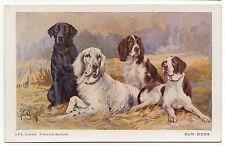 LABRADOR SETTER SPRINGER SPANIEL POINTER SPRATTS DOG ART POSTCARD R WARD BINKS