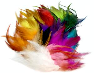 Bunt gefärbte Federn im Pack zu 100 Stück 8-15cm Farbmix