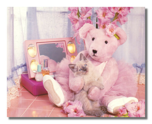 Pink Teddy Bear Holds Kitten Cat Makeup Room Photo Wall Picture 8x10 Art Print