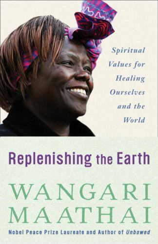 Replenishing The Earth Spiritual Values For Healing Ourselves And The World... - $14.27
