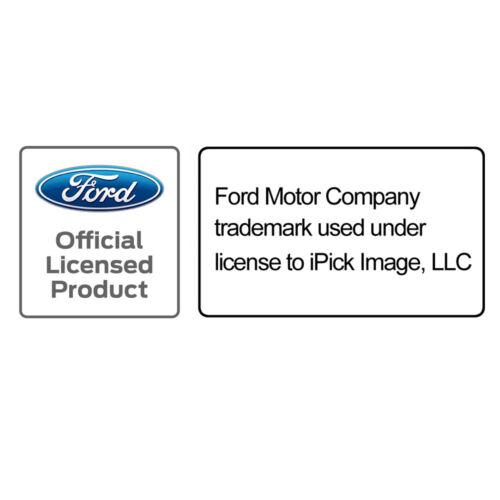Ford Explorer Blue Stripe Black Metal License Plate Frame
