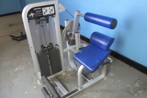 Details about Life fitness back extension machine used preowned  selectorized weight stack blue