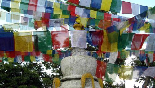 250 Mini-Gebetsfahne ~ Original Tibet Nepal ~ 90 cm lang ~ 5 Stück