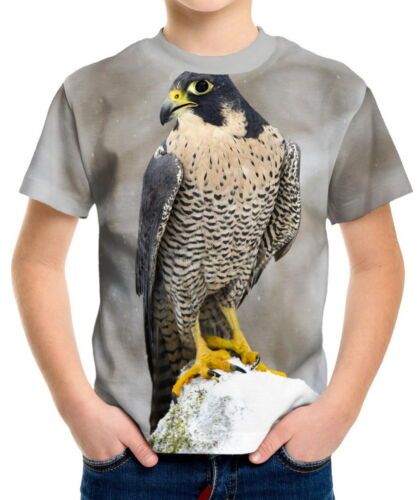 Peregrine Falcon Boys Kid Youth T-Shirts Tee Age 3-13 ael40786