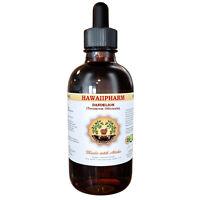 Dandelion (taraxacum Officinale) Organic Dried Leaf Liquid Extract