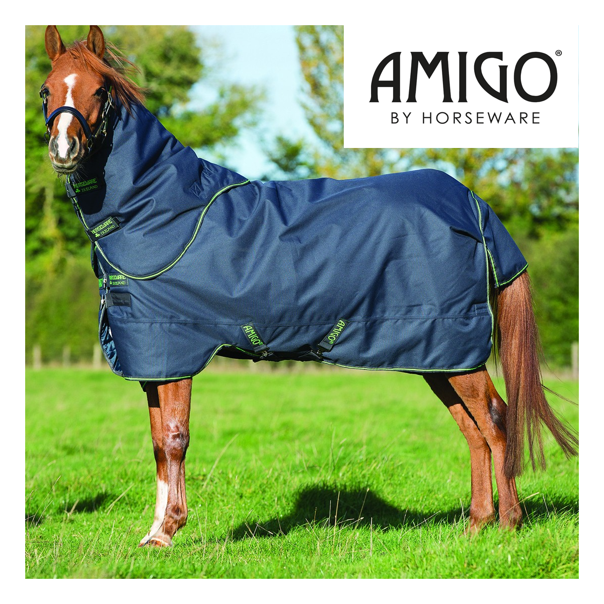 Horseware Amigo Pony Bravo 12 Plus Turnout 250g Mediumweight Turnout Plus Rug with Detachable a23ea5