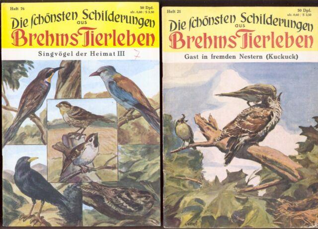 2 Hefte Brehms Tierleben von 1953+1957*Kuckuck*Kolkrabe* Blaurake* Bienenfresser