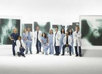 Greys Anatomy Poster 24in X 36in
