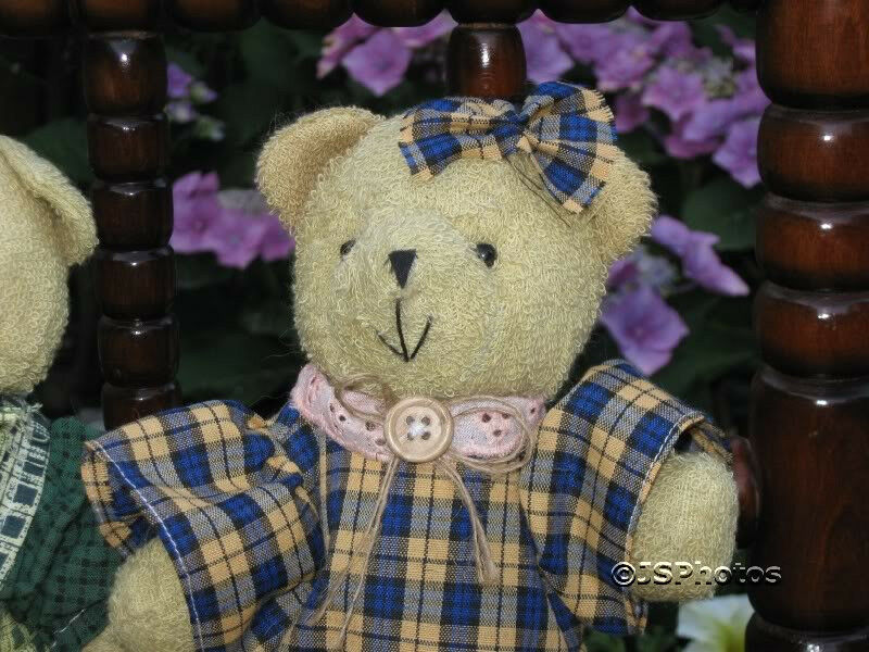 Dutch Amsterdam Teddy orsos orsos orsos Boy & Girl Couple 7e21ac