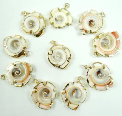 10PC Cute Gold rim ocean conch shell Pendant Bead necklace Jewelry Making #08 K1