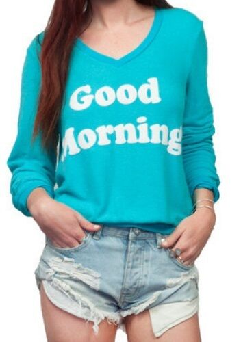 NWT Wildfox Couture - Good Morning V-Neck Baggy Beach Jumper in Summer Sea