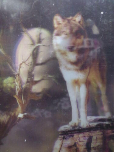 NEW A6 3D NOTEBOOK WOLF ON ROCKS WORLD OF 3D BLANK SEALED WOLVES