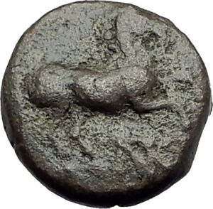 MARONEIA-Thrace-400BC-Authentic-Ancient-Greek-Coin-w-HORSE-amp-WINE-GRAPES-i64661