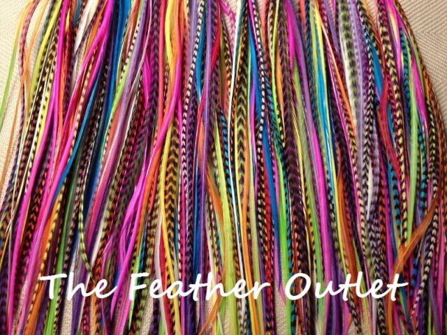 Lot 40 Grizzly Solid Feathers Hair Extensions saddle Colors Bright Real RAINBOW