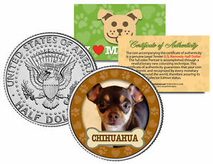 CHIHUAHUA-Dog-JFK-Kennedy-Half-Dollar-US-Colorized-Coin