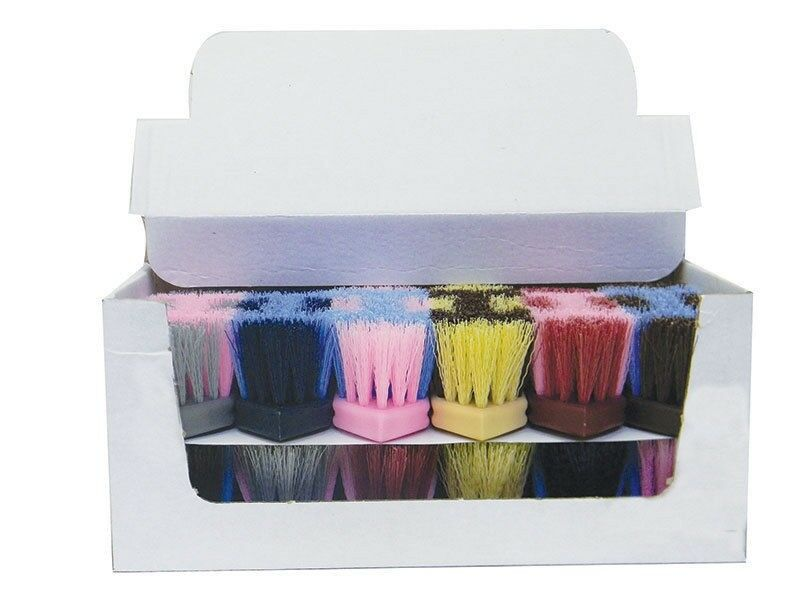 Partrade Two Tone Dandy Brush with Soft Bristles Assorted colors Box of 12 6.5