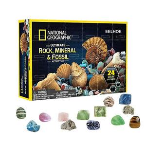 Mega Fossil Dig Kit Christmas Advent Calendar Mineral Gift Box  Education Toys