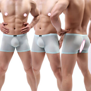 Men Sexy Briefs Iced Silk Transparent Panties Traceless Underpants Boxers Shorts