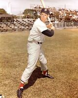 Ted Williams 8x10 Color Photo Picture Batting Stance Boston Red Sox
