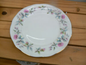 RARE-DUCHESS-CHINA-BRAMBLE-ROSE-24-CM-DINNER-PLATES-6-AVAILABLE