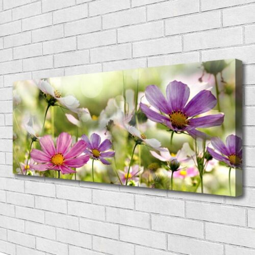 Leinwand-Bilder Wandbild Canvas Kunstdruck 125x50 Blumen Natur