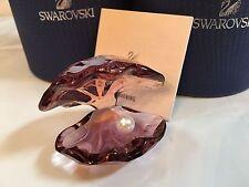 SWAROVSKI CRYSTAL PEARL OYSTER ANTIQUE PINK #5035512 BNIB $120