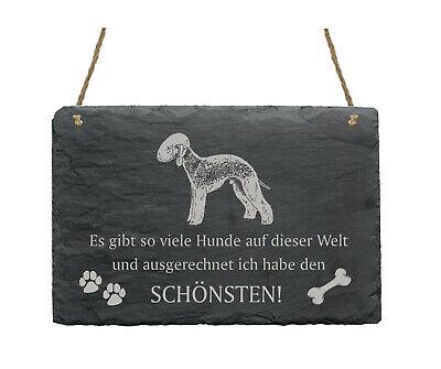 Schiefertafel « Bedlington Terrier - SchÖnster Hund » Spruch Hunde Wanddeko Deko