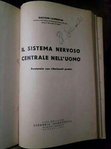 Lambertini-IL-SISTEMA-NERVOSO-CENTRALE-NELL-039-UOMO-ANATOMIA-VOL-6-E-7-ed-1944