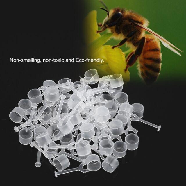 New Beekeeping Honey Entrance Feeder Hive Tool Beekeeper Bee Keeping Equip White