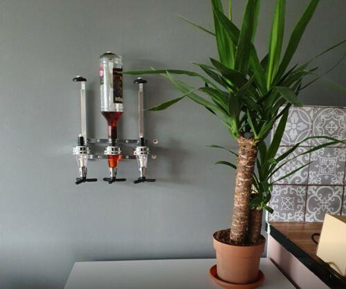 2 Stem Yucca Elephantipes Indoor Plant 45//20cm