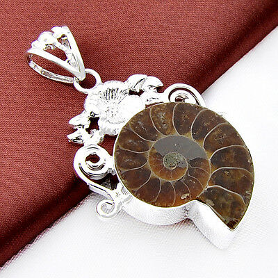 Family Jewelry Gift Natural Ammonite Fossil Gemstone Silver Necklace Pendants