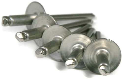 1//8 x 3//8 POP Rivet ALL Stainless Steel Large Flange 46LF USA Qty 1000