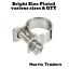 50 x MINI FUEL LINE ZINC PLATED  JUBILEE HOSE CLIP CLAMP DIESEL PETROL clamps